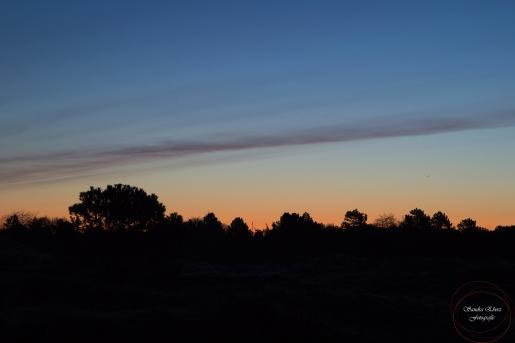 Sonnenaufgang-1-ex