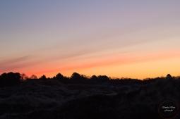 Sonnenaufgang-2-ex