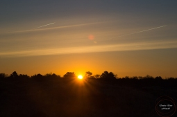 Sonnenaufgang-6-ex