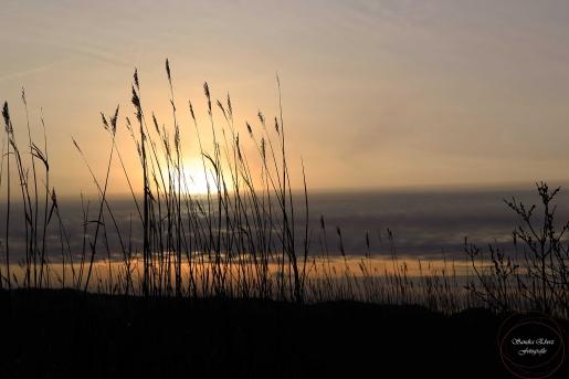Sonnenuntergang-1